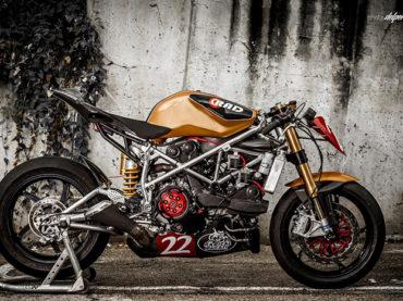 Matador Racer by Radical Ducati