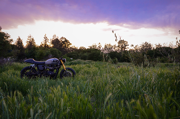 Custom Triumph Bonneville, sunset, moto photo